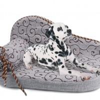 Canapea pentru caini